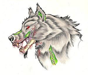 волк эскиз (6)