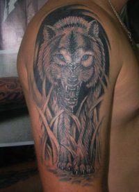Мужская татуировка Волк на предплечье