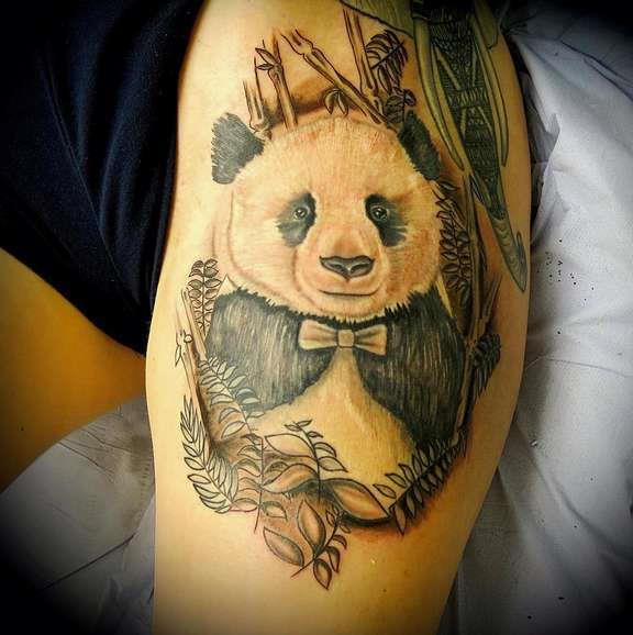 Старая панда