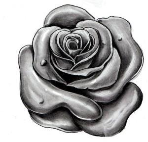 тату розы эскиз (10)