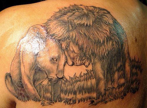 Awesome-Lion-Lioness-Tattoo-Design-photo-1
