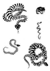змея эскизы (2)