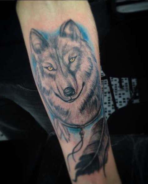 Добрый взгляд волка