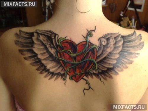 татуировка крыло для девушки