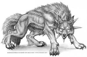 волк эскиз (18)