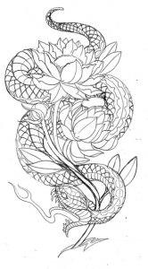змея эскизы (8)