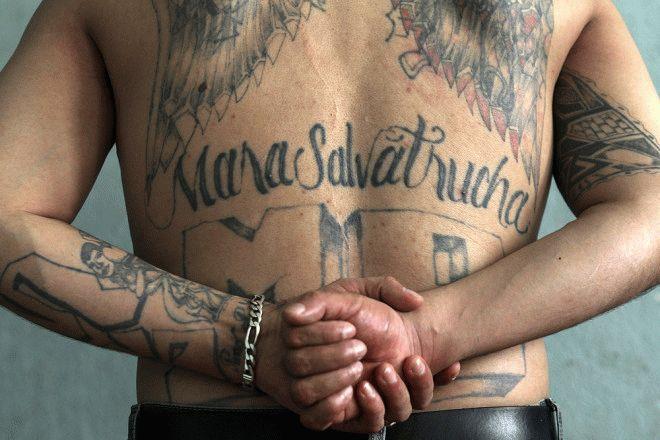 Татуировка Mara Salvatrucha