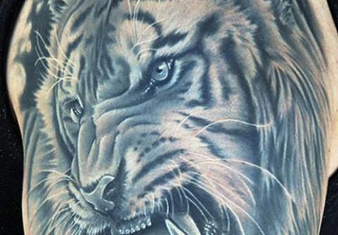 Обозначение тюремных ТАТУ тигр