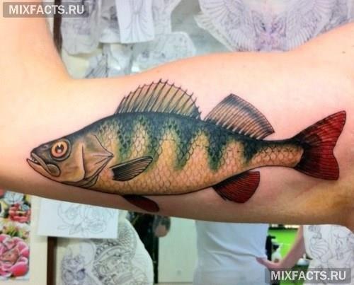 Тату рыбы