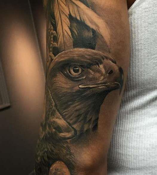 Красивая голова орла