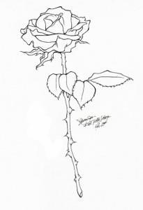 тату розы эскиз (1)