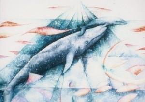 тату эскизы кита (6)