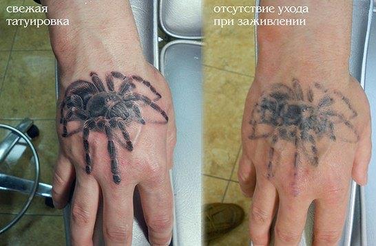 пример зажившей татуировки без ухода