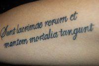 Татуировка латынь на руке