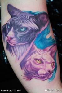 египетский кот (2)