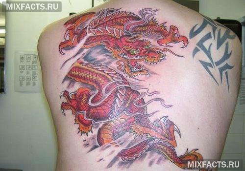 дракон тату на спине