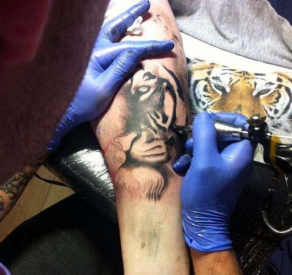 Процесс нанесения тигра на руку