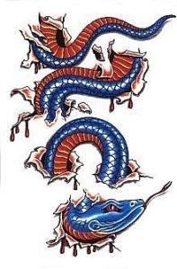 змея эскизы (10)