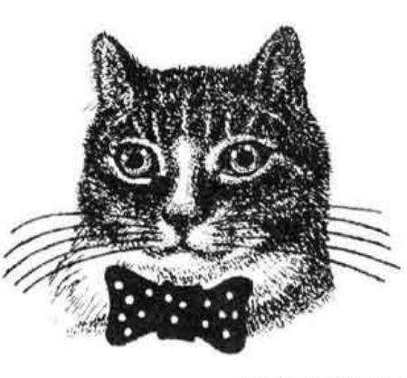 Наколка в виде кота и аббревиатура КОТ