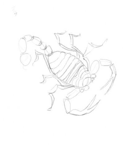 как нарисовать скорпиона карандашом