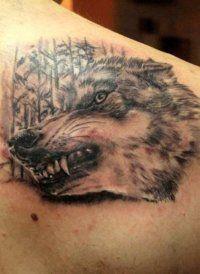 Эскиз тату Волк для мужчины на лопатке