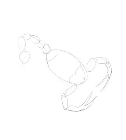 как научиться рисовать скорпиона