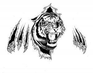 Эскиз татуировки тигр