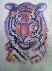 Значение татуировки тигра