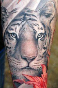 Эскиз тату Тигр для мужчин на внутренней стороне руки