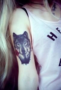 плечо волк (3)