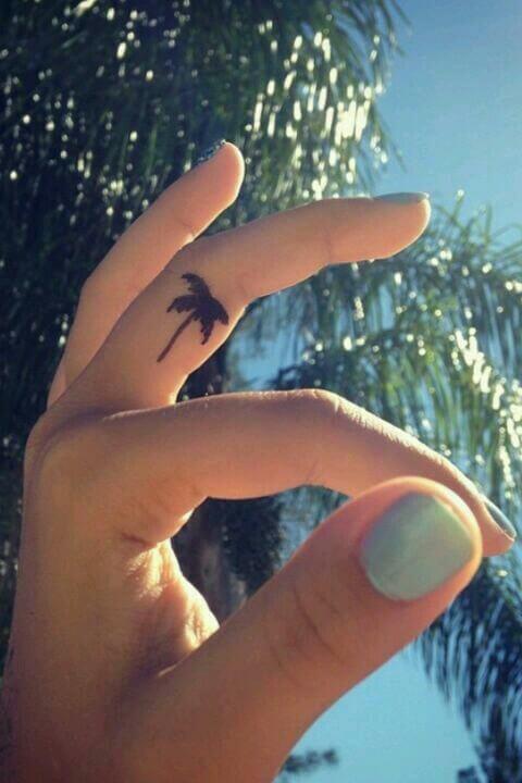 Tiny-palm-tree