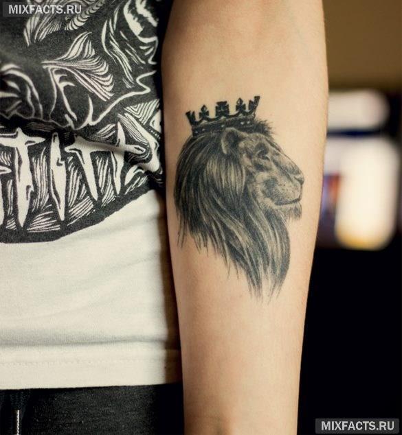 голова льва в короне тату